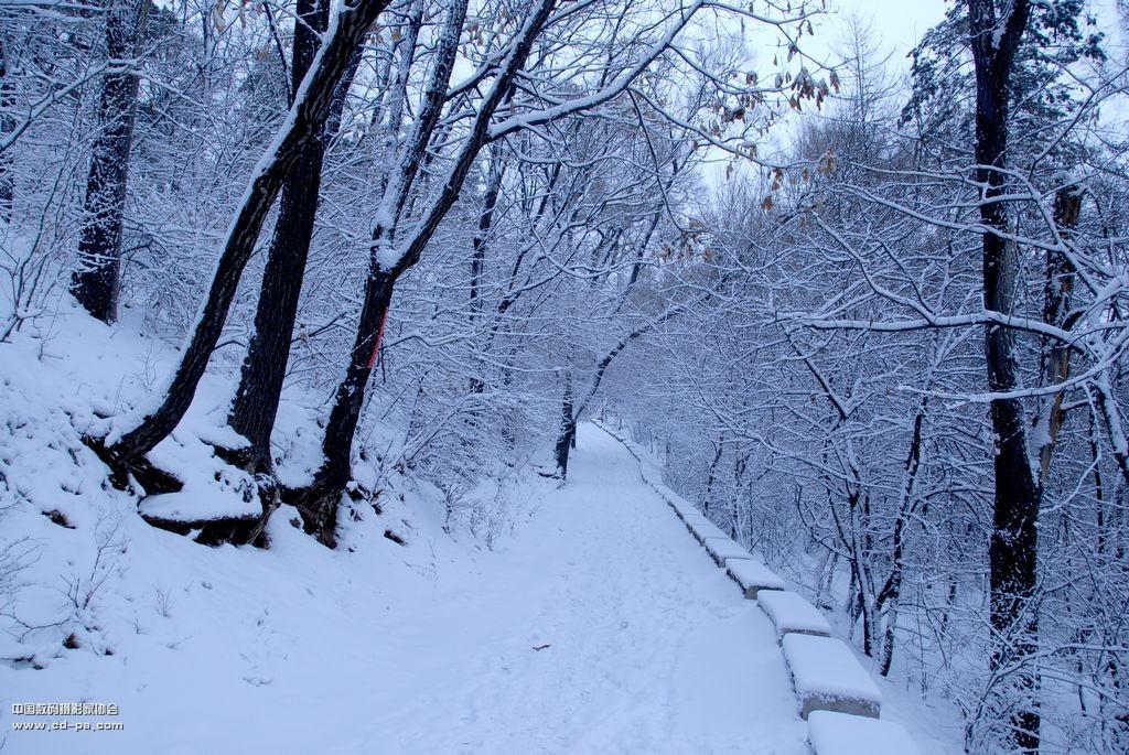 手绘白色蓝色风雪高山