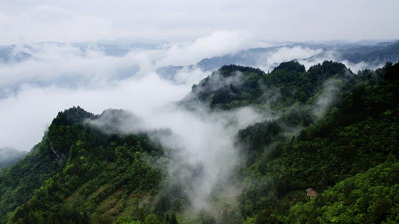 谋道地图太平村