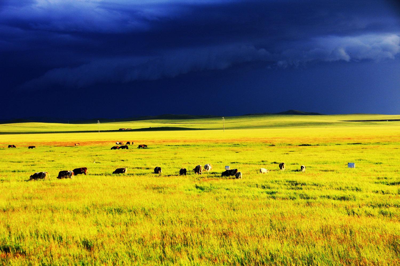 天边草原---乌拉盖