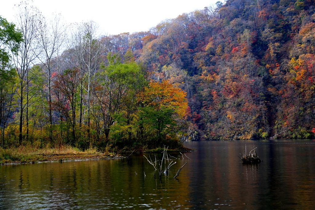 桦甸红石湖秋色 - 吉林摄影站 - 数码摄影网论坛