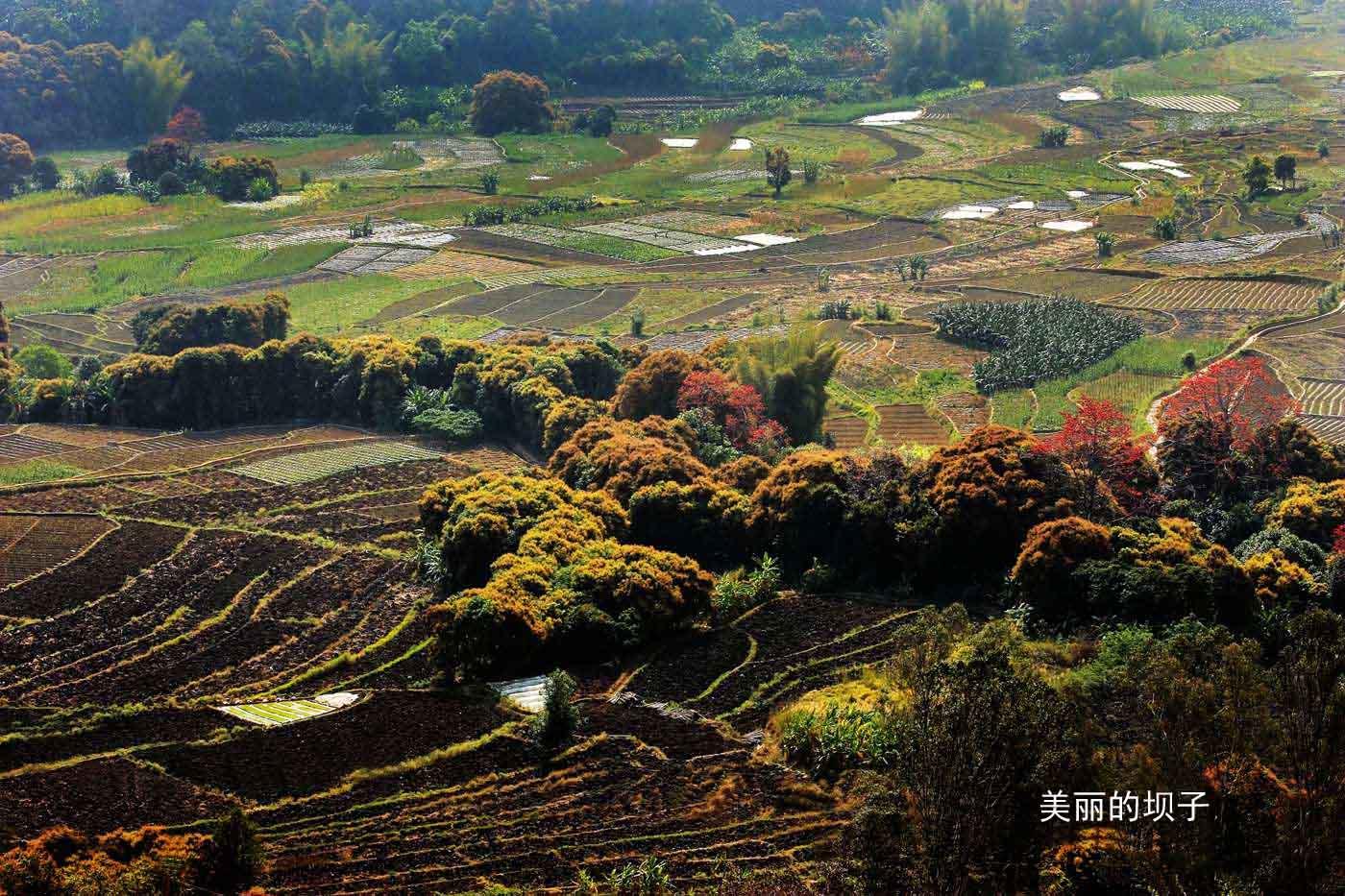 [原创] 一万里路山和水 云南风景写生7:红河梯田美 (上)