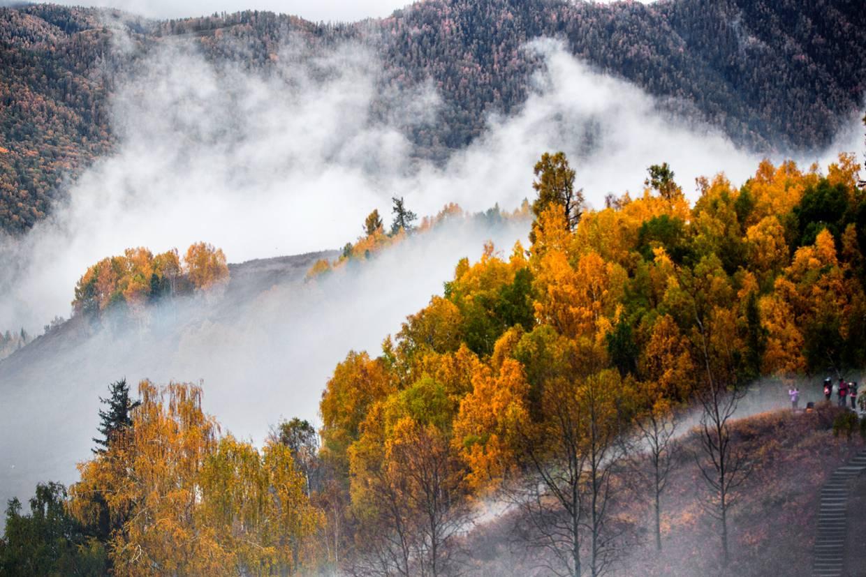 禾木秋色 - 自然风景 - 数码摄影网论坛 - 摄影交流