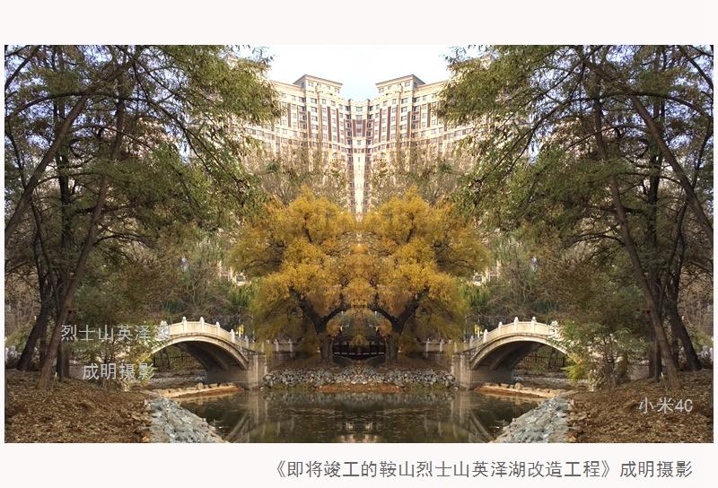 8.鞍山烈士山英泽湖改造工程:康成明摄影.jpg