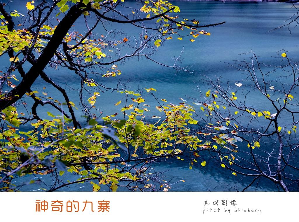 四川九寨沟、黄龙金秋风光摄影团 开始报名!