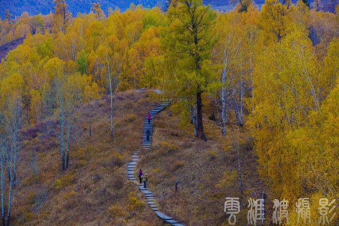 《美丽的新疆和木秋色随拍》