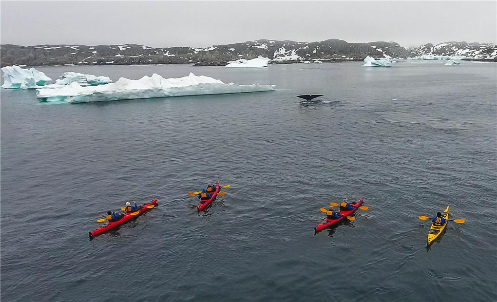 Disko Bay & West Greenland (2).jpg