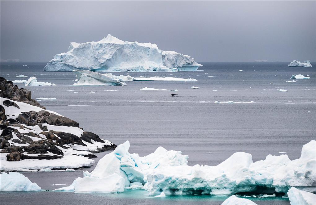 Disko Bay & West Greenland (3).jpg