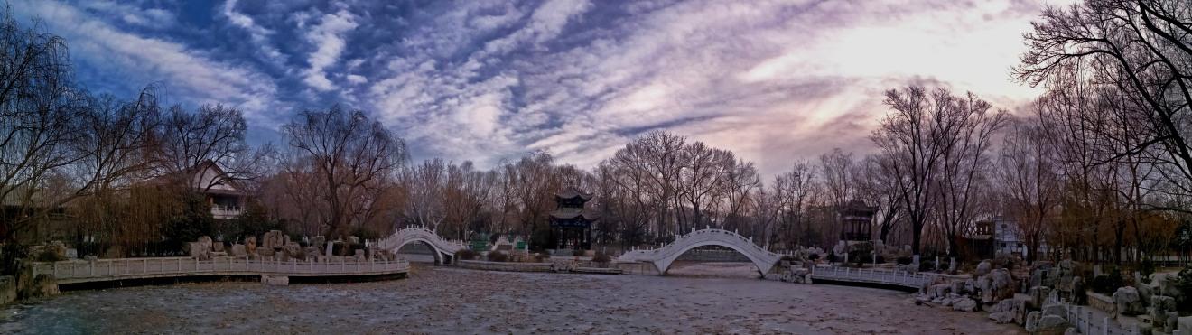 西沽冬日 〔手机摄影〕