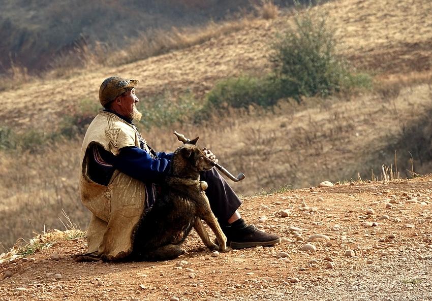 老人与狗...