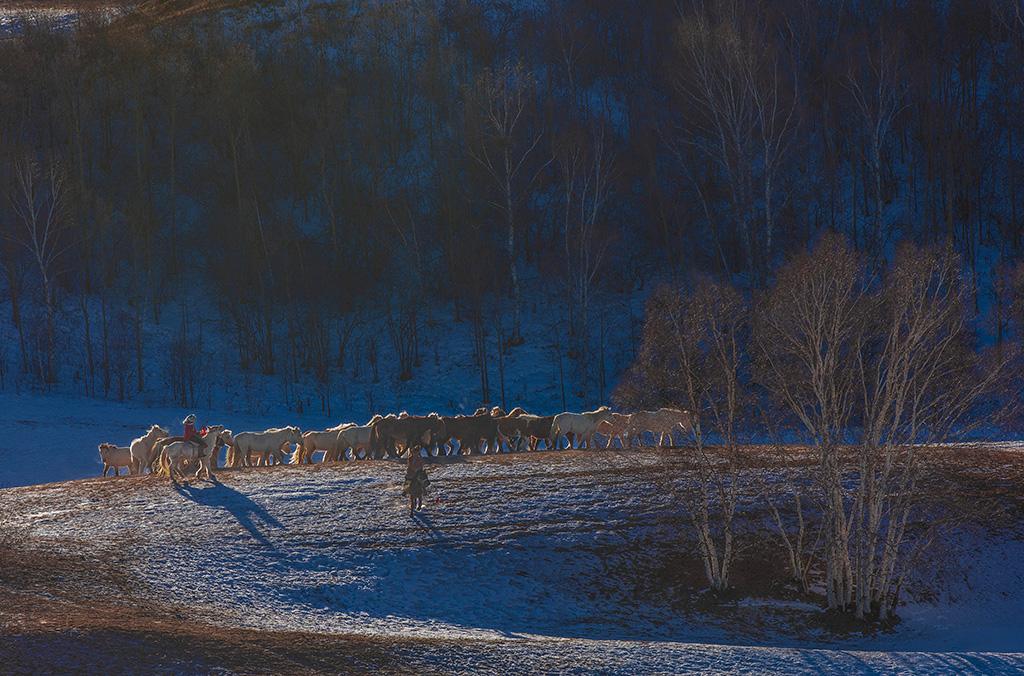 冬日垻上观馬