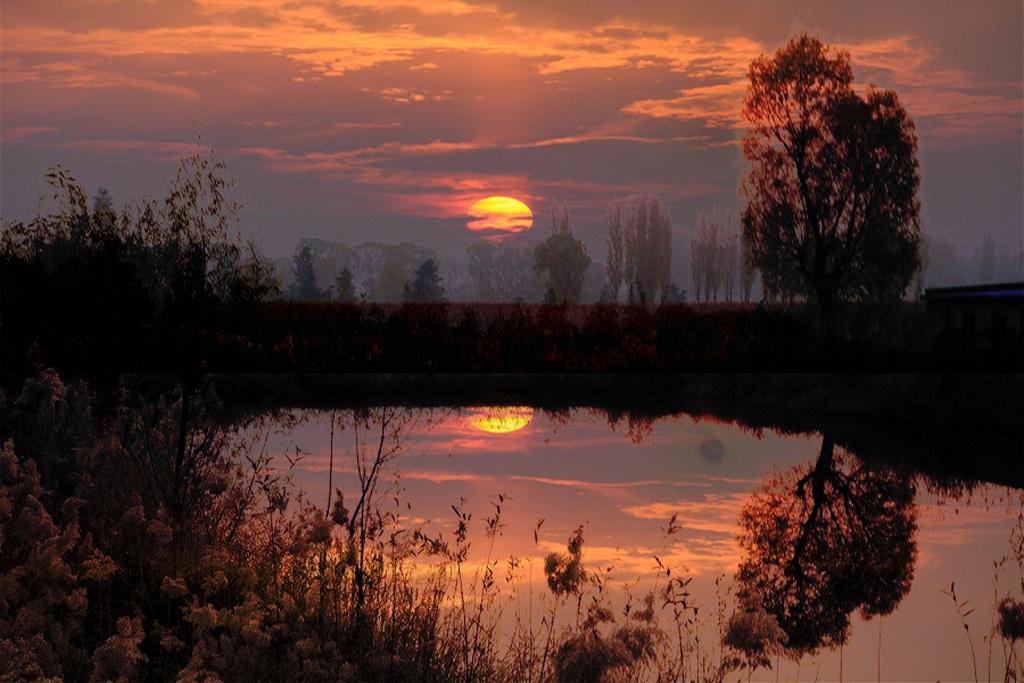夕阳池塘边