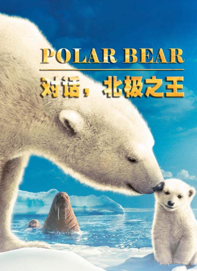带你走进北极,探索神秘的北极熊王国!开始报名了!