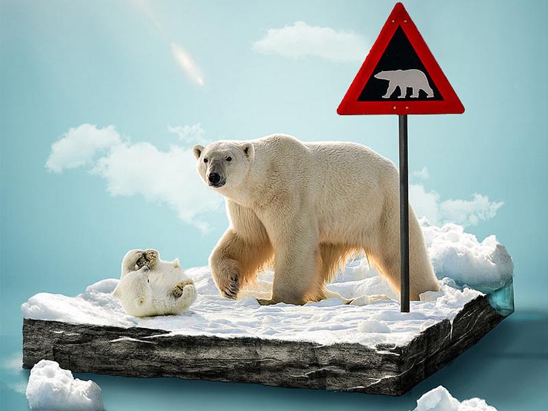 揭秘北极三岛丨格陵兰岛+斯瓦尔巴群岛+冰岛之旅!开始报名了!