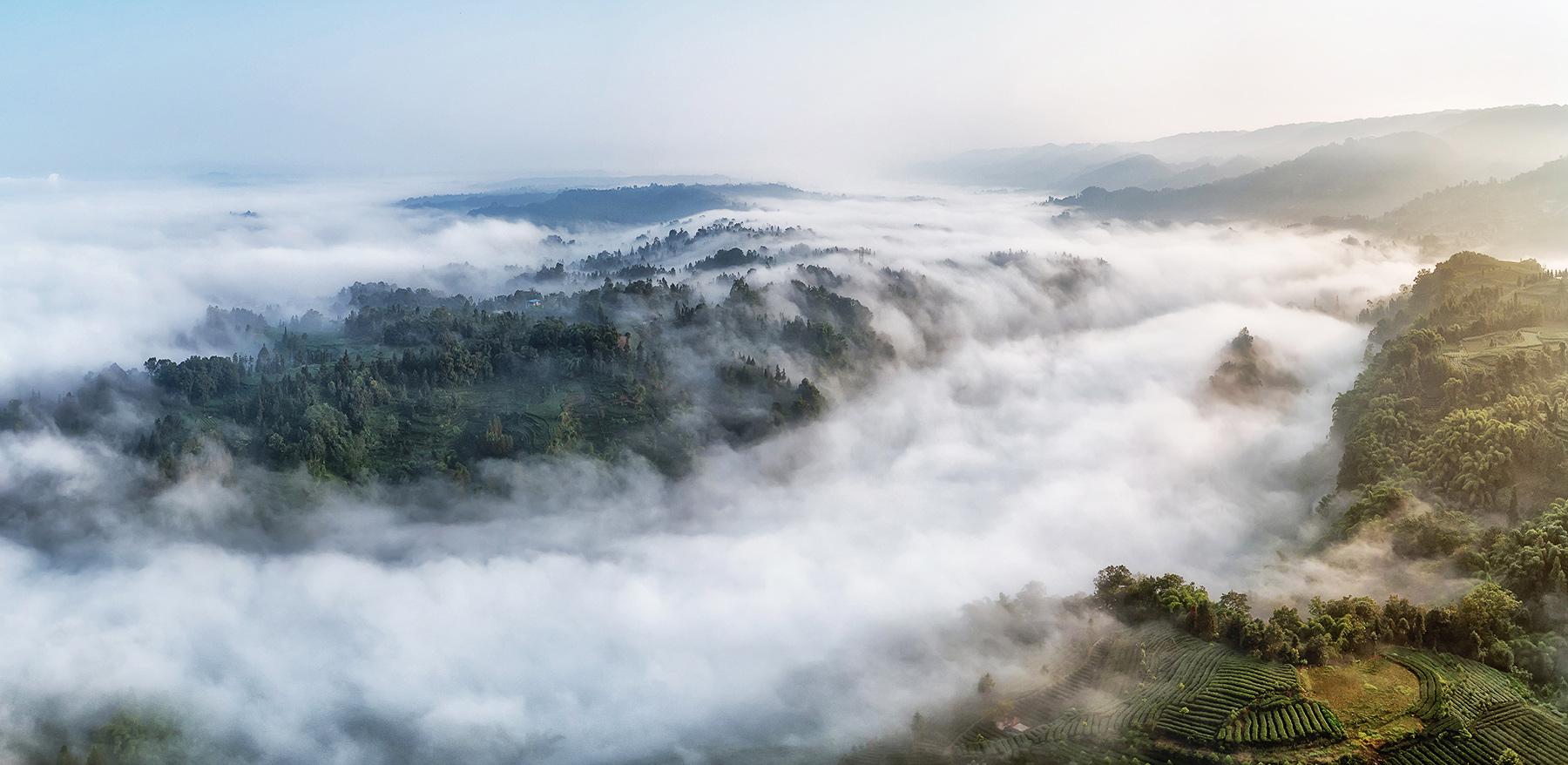云台山雾似潮涌