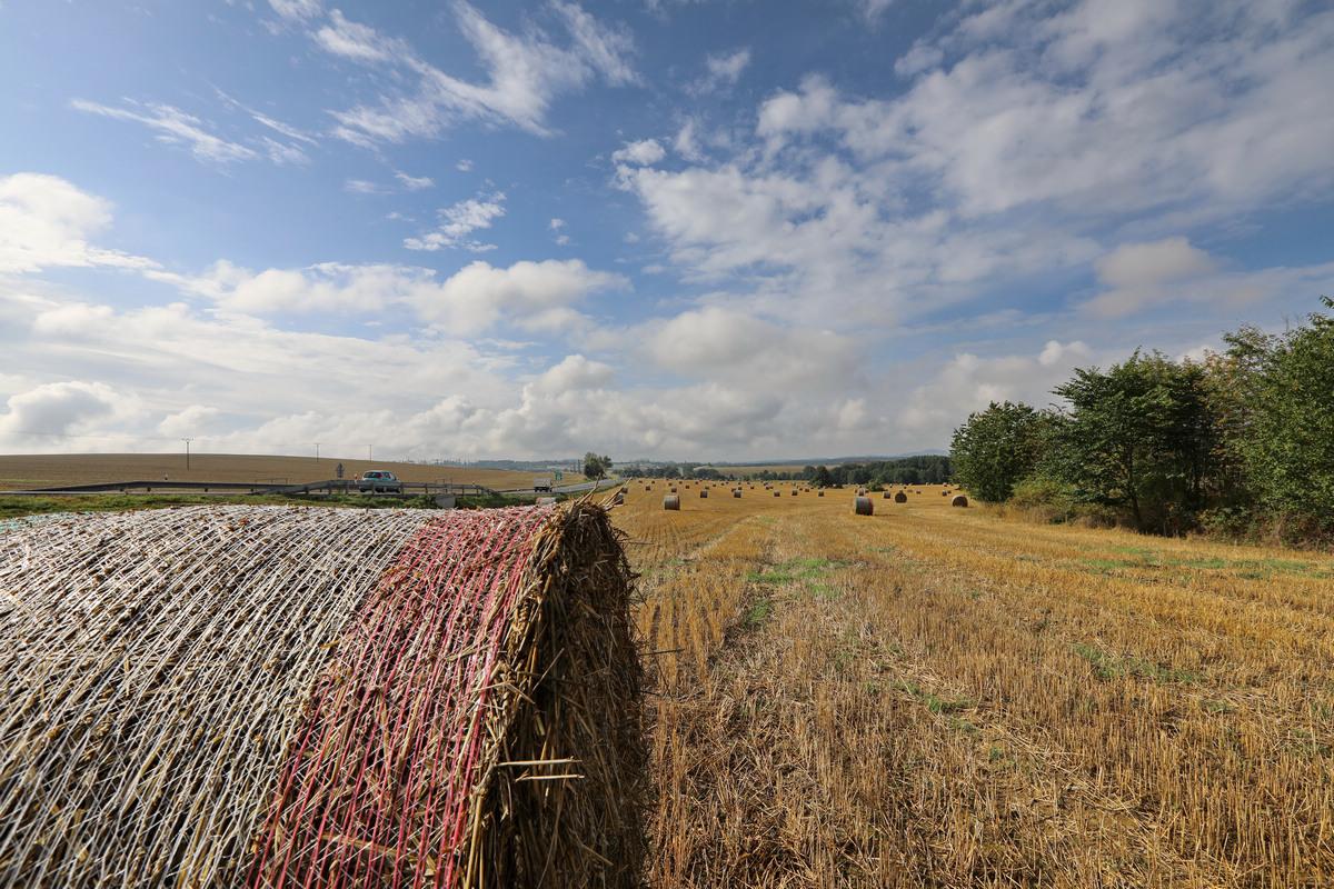 欧州七国游---捷克--秋收之果实--麦拮扦
