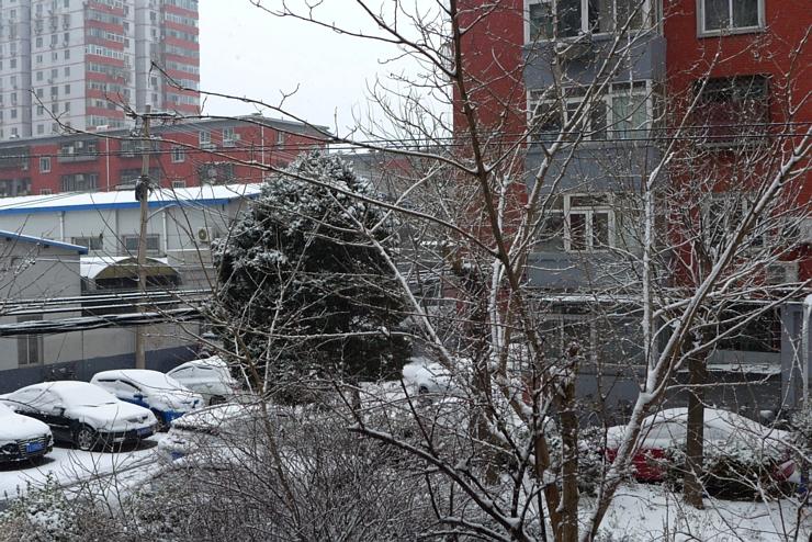 雪還在下....