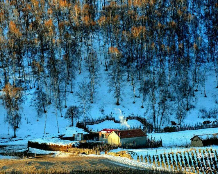 纯坝上冬韵六日摄影创作团